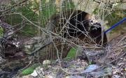 Γεφύρι Στην Είσοδο Του Κρυφοβού