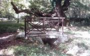 Μικρό Γεφύρι Στις Πηγές Του Λούρου