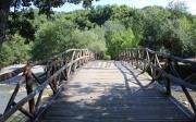 Γεφύρι Στο Νεστόριο