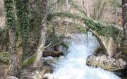 Γεφύρι Του Μύλου (Βολοντέρο)