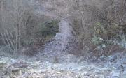 Γεφύρι Του Ματσόπουλου