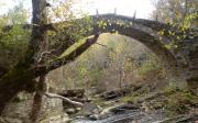 Γεφύρι Χαμ Στη Θέση Σλίβα
